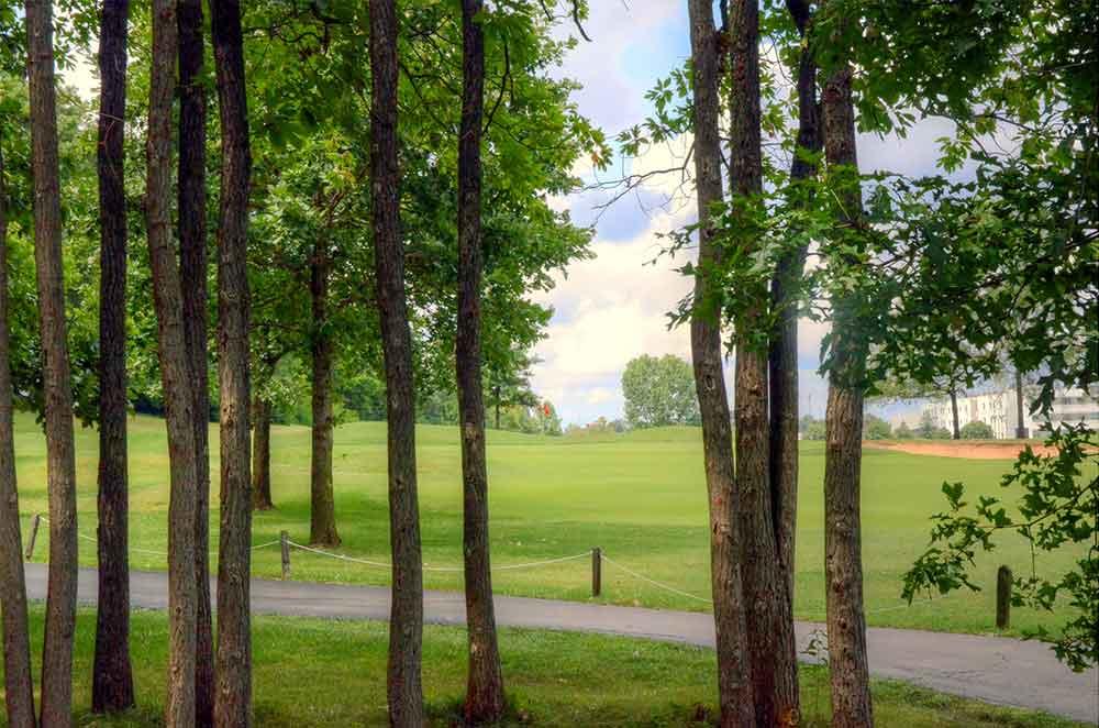 The-Falls-Golf-Club,-O'Fallon,-MO-Trees