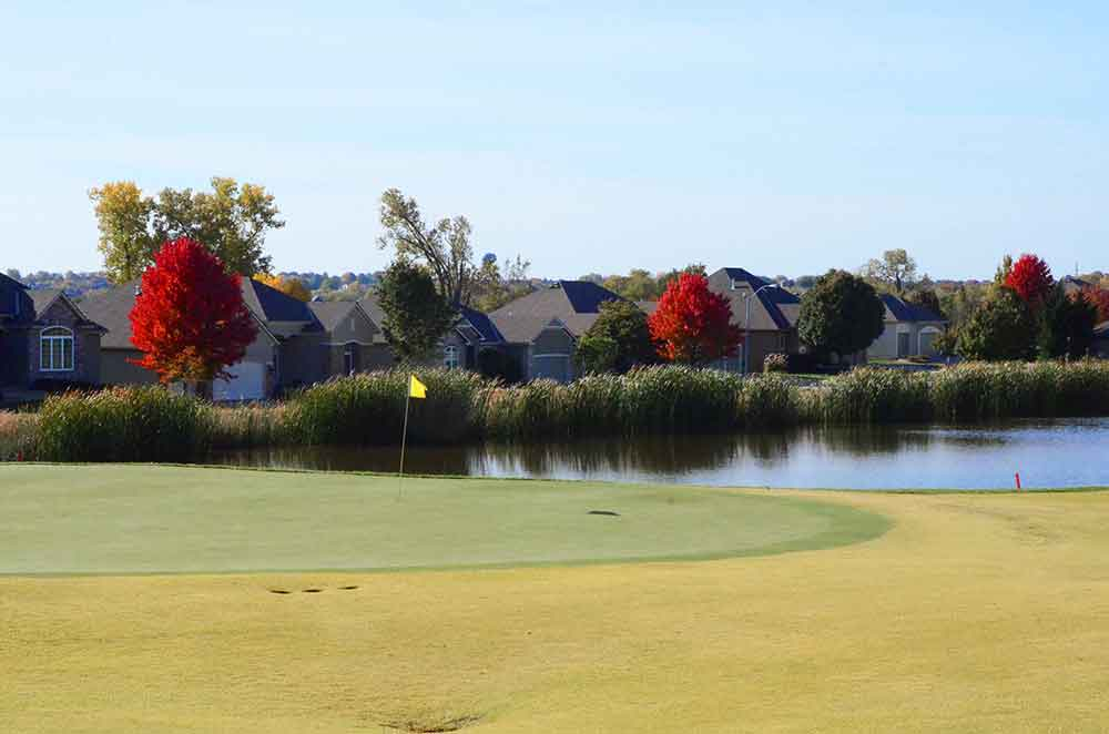The-Golf-Club-at-Creekmoor,-Raymore,-MO-Cottontails