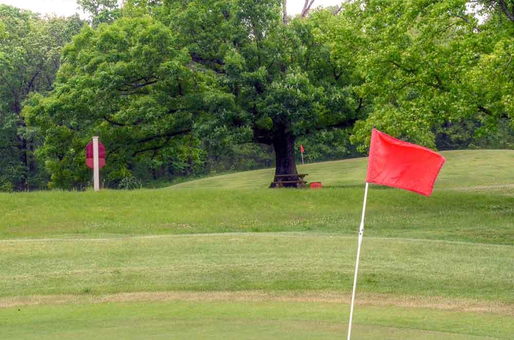 Viburnum-Golf-and-Country-Club,-Viburnum,-MO-Flag