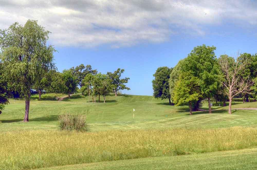 Windmill-Ridge,-Monett,-MO-Native-Grass