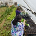 The ladies doing a little  gardening at Red Willow