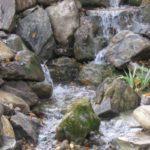 Maranatha Landscape Bakersfield CA
