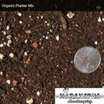 Organic Planter Mix - Maranatha Landscape Bakersfield