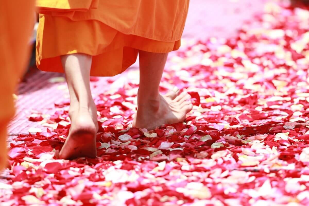 acceptance, mindfulness