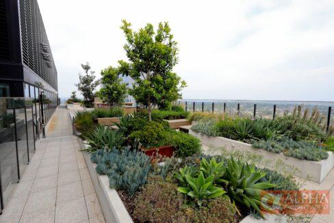 North Ryde Garden