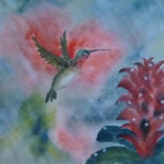 Going for the Red (Hummingbird and Dew Drops), Sumi Watercolor by Carol Waite, Size 20in x 15in (June 2017)