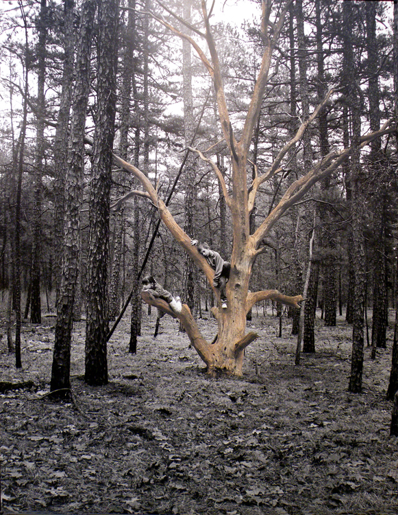 HONORABLE METNION: My Immortality Tree, Hand Painted Photo by Michael C Habina (February 2012)