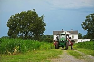 Spotsy Tractor, Photography by Dawn Whitmore - Size 8in x 12in (August 2016)