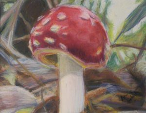 The Toadstool, Pastel by Annie Jedick (June 2012)