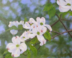 Dogwood in Bloom, Acrylic by Dorothy Johnston (June 2012)