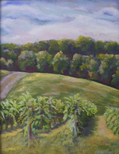 Rogers Ford Vineyard, Pastel by Kathleen Willingham (October 2012)