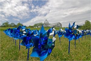 Lewis Pinwheels, Photography by Dawn Whitmore, Size 8in x 12in x 1in (July 2017)