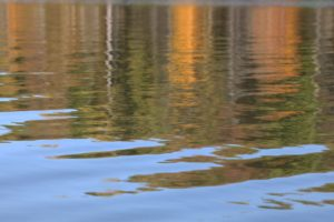 From the Kayak 2, Photography by Linda C Agar-Hendrix (March 2012)