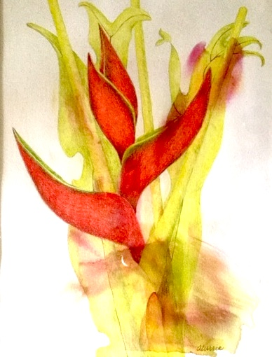 Lobster Claw and Philodendron Xandra, Colored Pencil on Watercolor Monotype by Ann Currie, 12.5x9.5, $300 (October 2017)