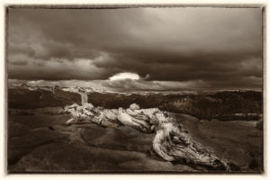 On Sentinel dome, Photography by David Boyd, 12in x 18in, $125 (February 2018)