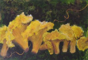 Electric Chanterelles, Acrylic by Bev Bley, Size 21.25in x 14.5in (October 2013)