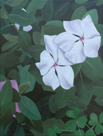 White Vinca, a painting by Kathy Guzman (MG: April 2013)