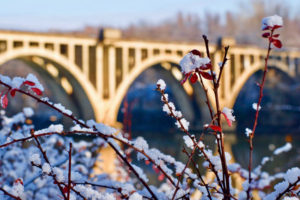 Bridge in the Morning II by Brienna Thompson (CBTC: February 2019)