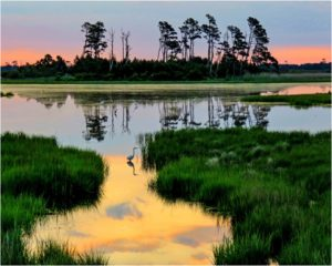 Chincoteague Sunrise, Photography by Penny A. Parrish, 16in x 20in, $200 (February 2019)