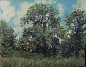 Chestnut Tree In Summer, Acrylic by Rosemary Duda, 11inx 14in, $285 (May 2019)