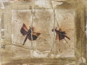 Dragonfly Waltz, No. 18, Mixed Media by Bob Worthy (November 2013)