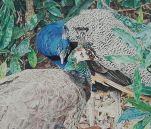 Ralph and Alice, Colored Pencil by Ernie L. Fournet (November 2013)