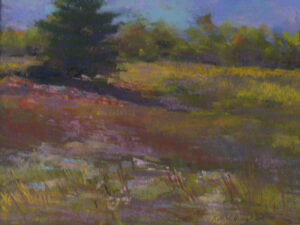 Early Fall Field, Pastel by Kathleen Willingham (November 2013)
