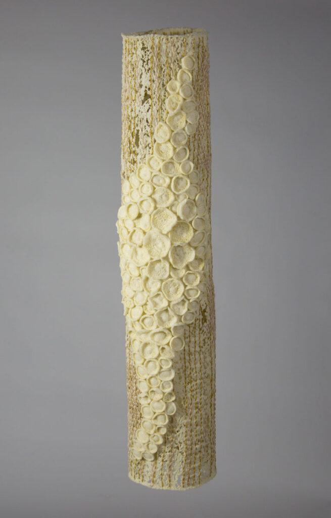 Tree Lichen by Joyce Leatherwood (MG: May 2016)