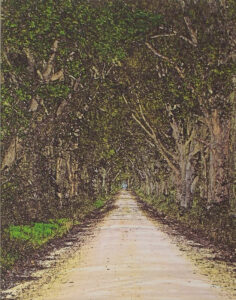 Florida Country Road, Digitally Manipulated Photograph by Lee Cochrane (February 2016)