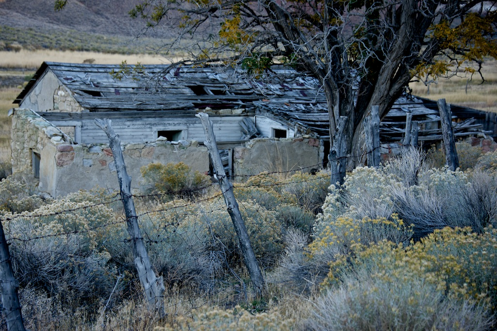 Nevada Neglect by Lee Cochrane (MG: September 2015)