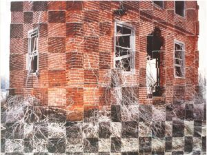 Bricks and Vines, Traditional Color Photography by Michael C Habina (February 2016)