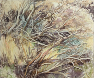 Tumbleweeds of the Canary Islands, Watercolor by Sally Rhone-Kubarek, 20in x 24in, NFS (November 2019)