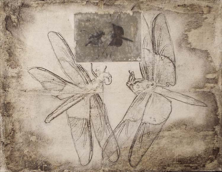 SECOND PLACE: Dragonfly Waltz No 16, Mixed Media by Bob Worthy (June 2014)