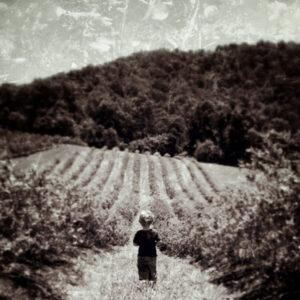 Facing Fields, Photography by Katherine McAskill (December 2014/January 2015)