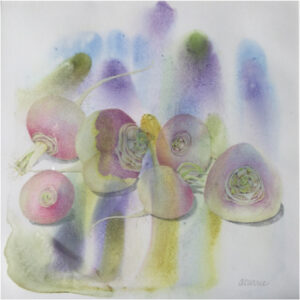 Turnips, Colored Pencil on Watercolor Monotype by Ann Currie (May 2016)