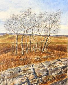 Skyline Drive in December, Watercolor by Jane Cariker, 10in x 8in, $200 (July 2020)