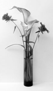 Summer in a Bud Vase, Photograph by Lee Cochrane, 12in x 7in (November 2020)