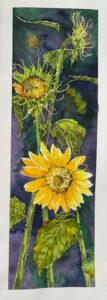 Sunflower 1, Watercolor by Susan Wyatt, 23in x 8.2in, $275 (November 2020)
