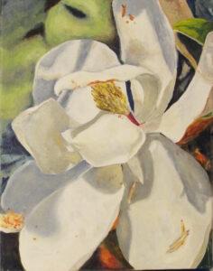 Magnolia, Oil on Linen by Michele Vonnegut Costello, 14in x 11in, $350 (Dec. 2020 - Jan. 2021)