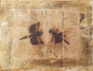 Dragonfly Waltz No. 19, Mixed Media by Bob Worthy  (October 2015)