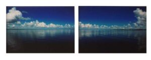 Cherry Point Diptych, Color Photography by Cathy C Herndon  (September 2015)
