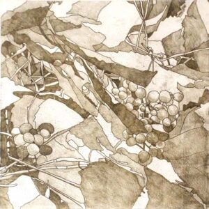 Grapevines, Monotype by Christine E Long (February 2015)
