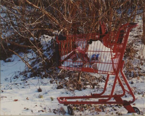 Red Shopping Cart, Photography by Dawn Whitmore  (March 2015)