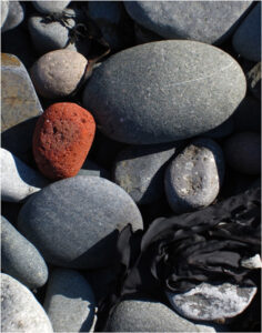 Maine Stones, Photography by Joanne Emery  (March 2015)