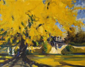 The Great Ginkgo at Chatham, Oil by Marcia Chaves  (Dec. 2015-Jan. 2016)