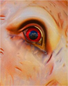 Carousel Eye, Photography on Metal by Penny Parrish  (May 2015)