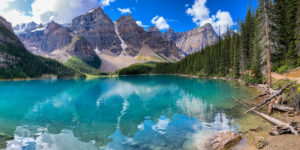 Alpine Wonder, Digital Photograpy by Mark Bradshaw, 10in x 20in, $150 (February 2021)