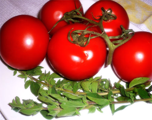 Fresh tomatoes and oregano