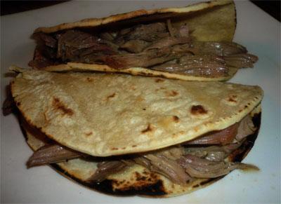 Turkey carnitas in corn tortillas