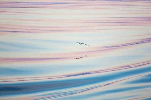 Foto di Stefan hendricks
